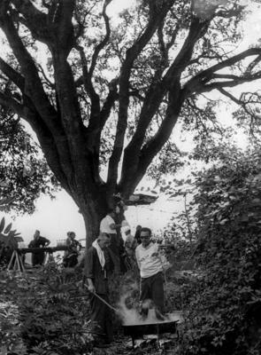 Fent una paella a l'alzina de Can Magre. Fons de l'Arxiu Històric Municipal de Mollet del Vallès