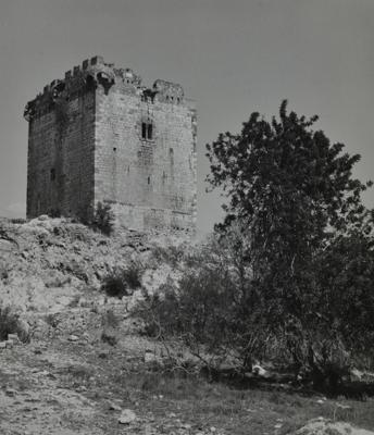 Imatge antiga de la Torre de la Carrova, Amposta (Montsià) 1983. Autor: Albert Aymà. Generalitat de Catalunya, Departament de Cultura.