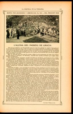 L'alzina del Passeig de Gràcia quan fou tallada el setembre de 1908. Pàgina de l'Esquella de la Torratxa