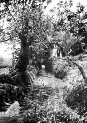 Rec de la mina d'aigua de Can Magre. Fons de l'Arxiu Històric Municipal de Mollet del Vallès